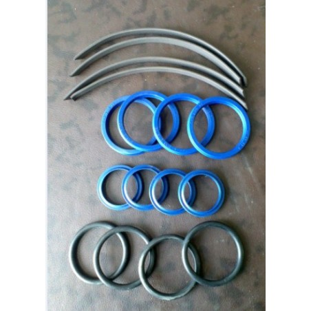 Set of seals for hydraulic cylinders